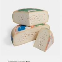 Hommage Maasdam goat cheese 10kg